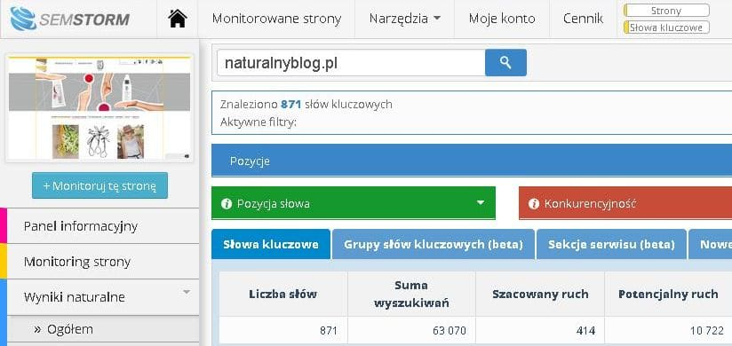 naturalny-blog-analiza-semstorm