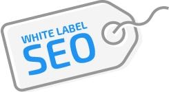 whiite-label-seo-image